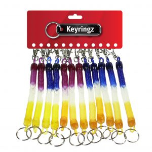Multi Coloured Spiral with Mini Clip Keyring